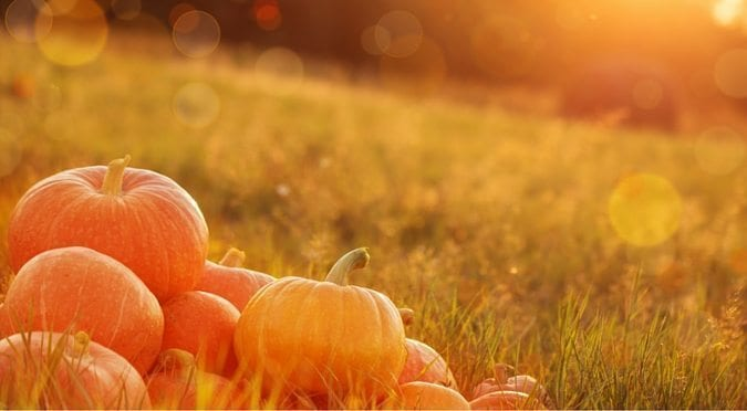TFO - Table for One Ministries- Ministry for Singles and Leaders to Singles - Blog - Halloween NOT Harvest